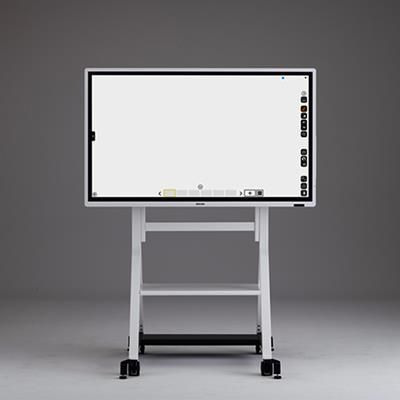 Interactive whiteboard D5530